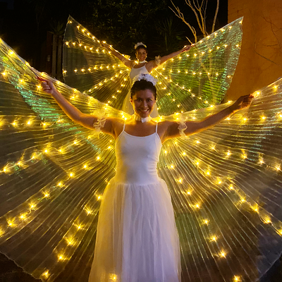 LED Gold Wings